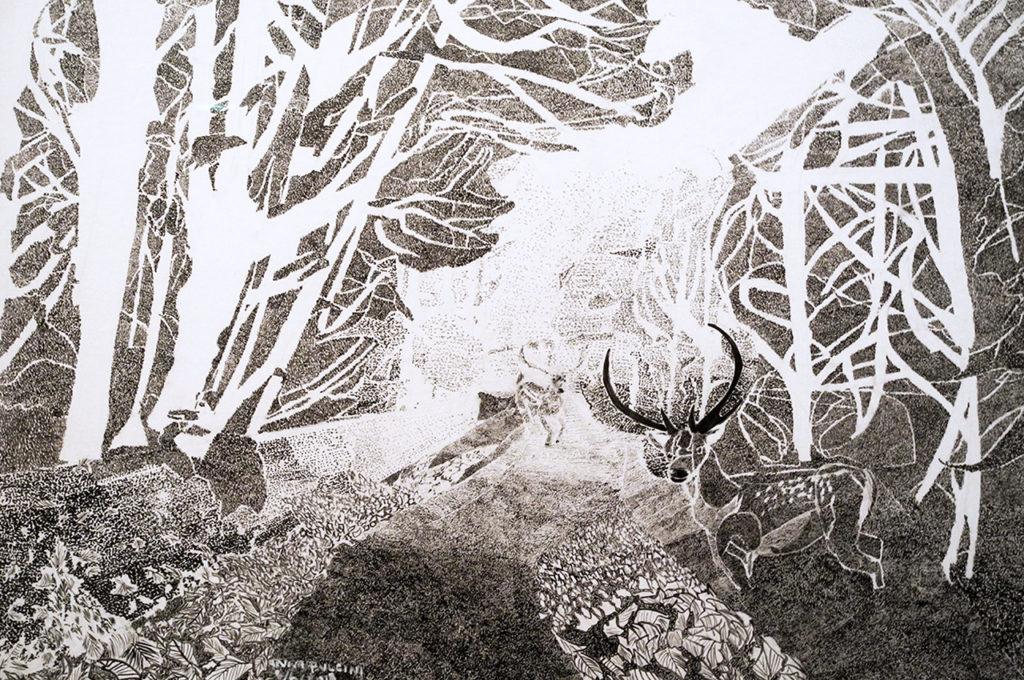 Nei boschi e in altri luoghi, sui disegni di Anna Pulcini • Francesco Parimbelli