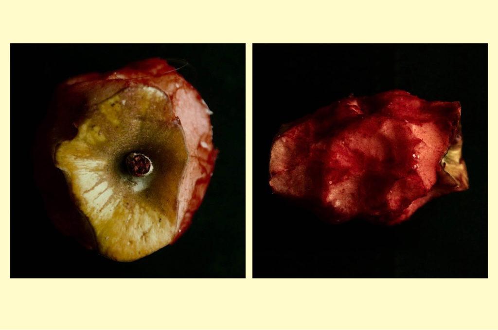 La mela di Ilaria • Luciano Passoni